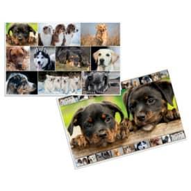 Schreibunterlage Hunde