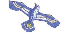 Drachen Sturmvogel 53x80cm THOMAS 15 Produktbild