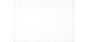 Karteikarte A7 100 ST weiß kariert RNK 114870 Produktbild