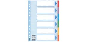 Register A4 blanko bunt 6 teilig ESSELTE 100192 Karton färbigeTabs Produktbild