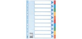 Register A4 blanko bunt 10 teilig ESSELTE 100193 Karton färbigeTabs Produktbild