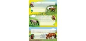 Buchschild Pferde HERMA 5568 beglimmert Produktbild