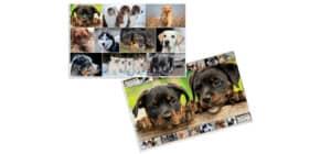 Schreibunterlage Hunde HERMA 19378 55x35cm Produktbild